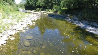 Vistas rio2